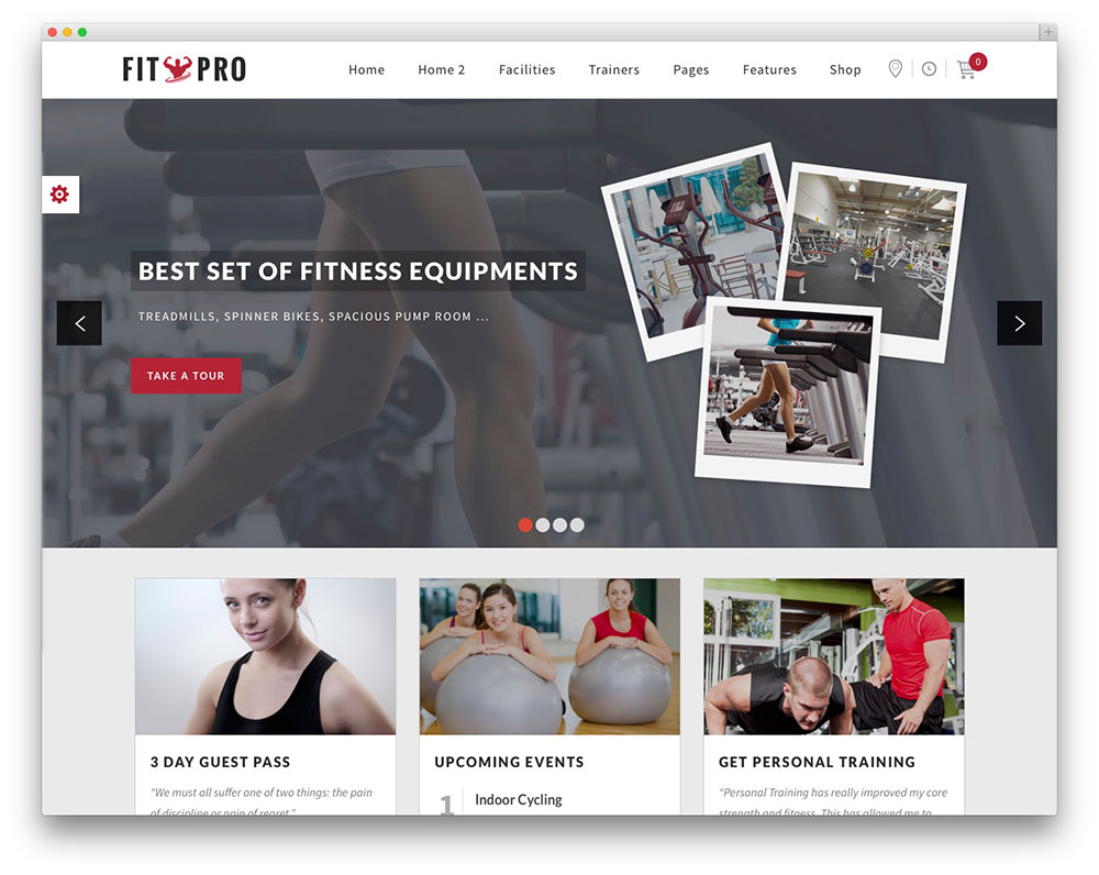 fitpro fitness theme