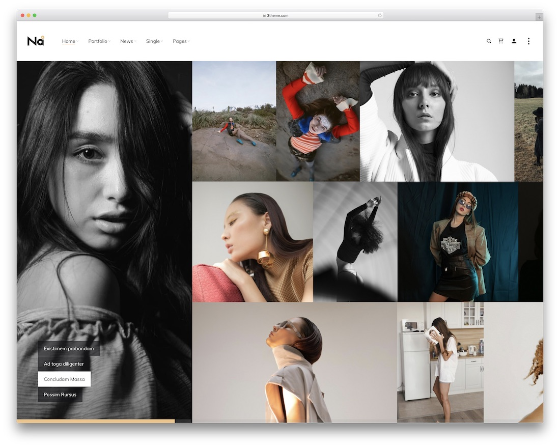 thena photography wordpress theme