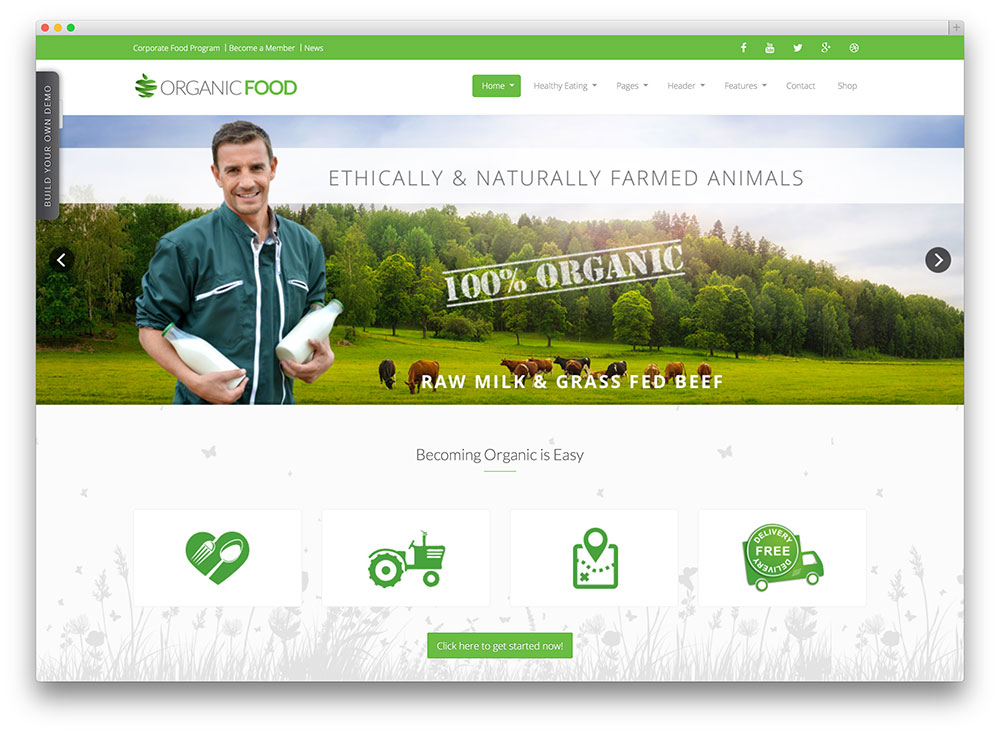 organic food healthy wordpress theme