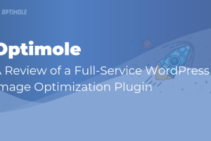 Optimole Review: Optimisation complète de l'image WordPress