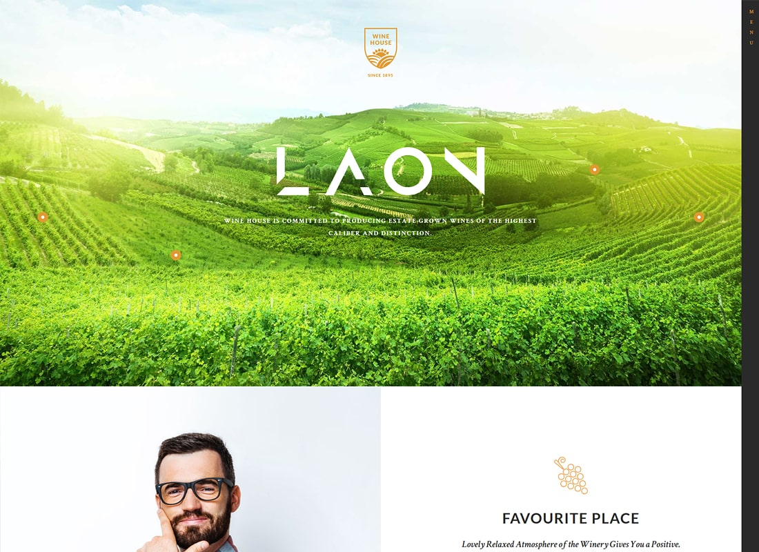 Laon | Wine House, Winery & Wine Shop Thème WordPress
