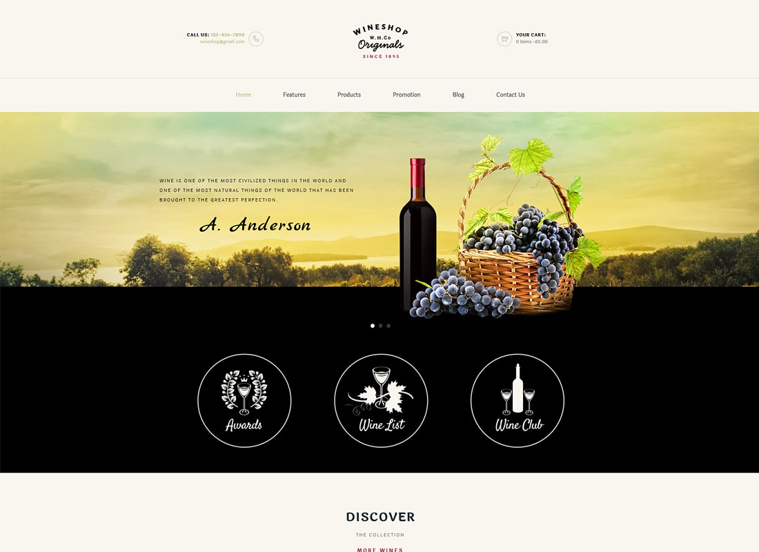 WineShop | Thème WordPress du magasin en ligne Food & Wine