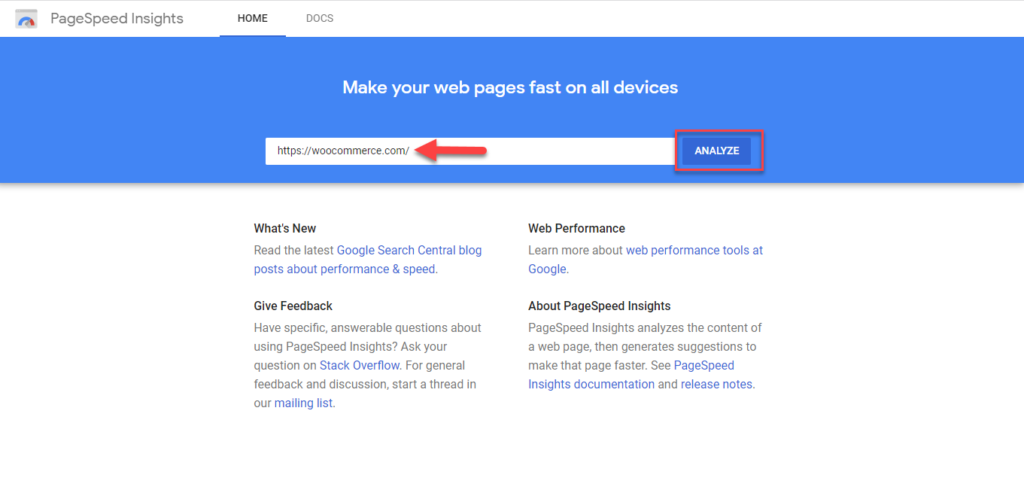 Comment utiliser Google PageSpeed Insights 28